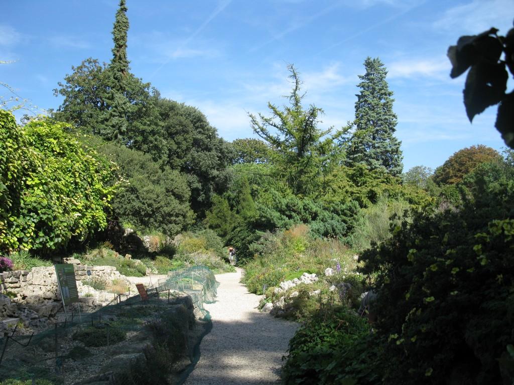 Alpine Garden of Jardin des Plantes