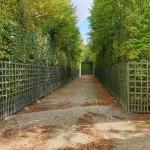 Secret-Versailles-Alley