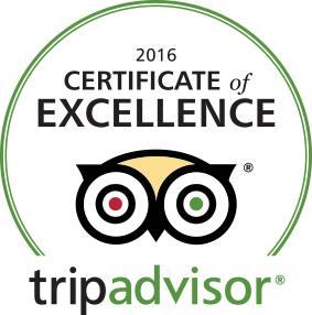 2CVParisTour-Certificate-Excellence